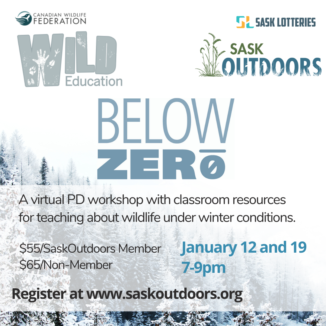 Below Zero Workshop
