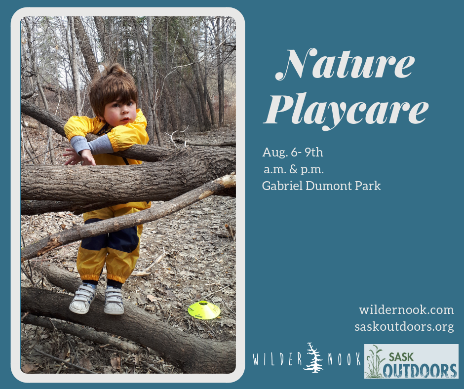 Nature Play Care Summer Camp Edition