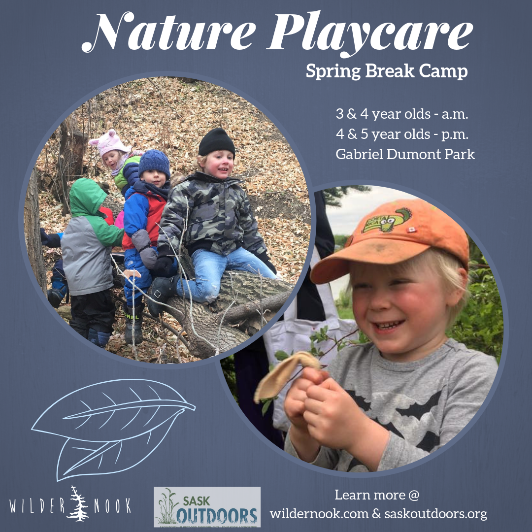 Nature Playcare - Spring Camp Edition