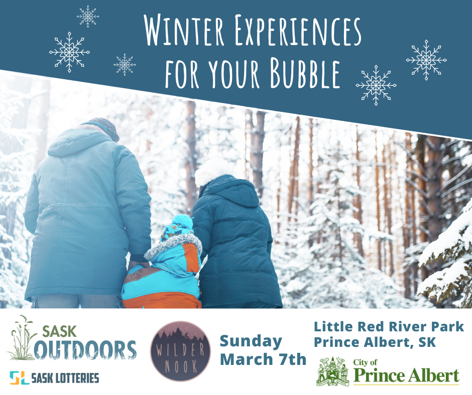 Winter Experiences for your Bubble