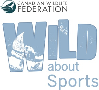 WILD about Sports
