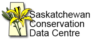 Image Database of Saskatchewan Species