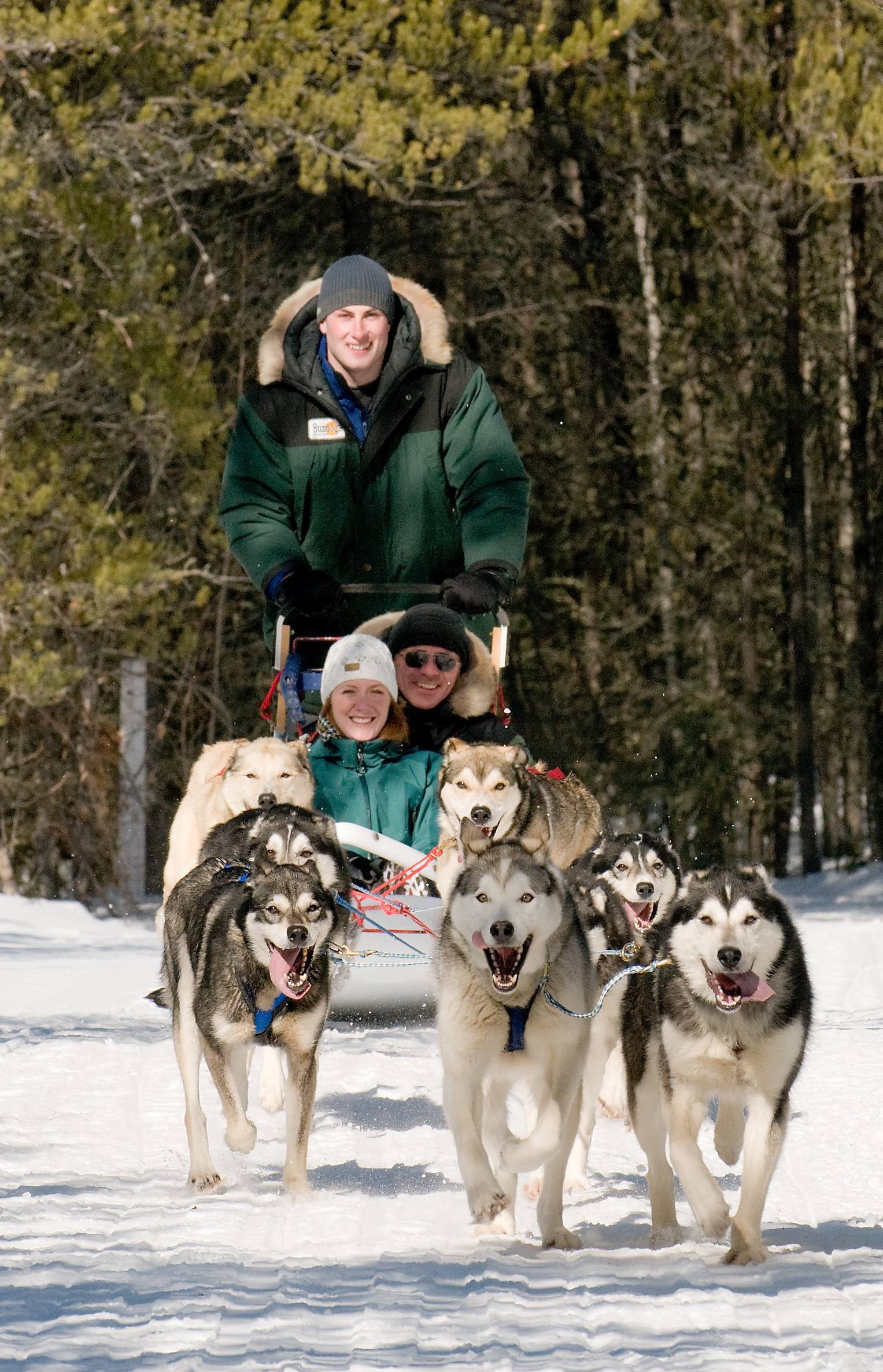 Winter Camping with Sled Dogs
