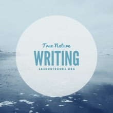 Try something new! Sask Outdoors is partnering with writing teacher Joyce Belcher to offer a four-class series of True Nature Writing.  True Nature Writing is a way of writing that helps us find our voice and stay ahead of the inner critic. In guided sess