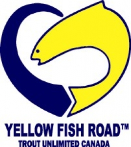 Yellow Fish Road Action Ideas